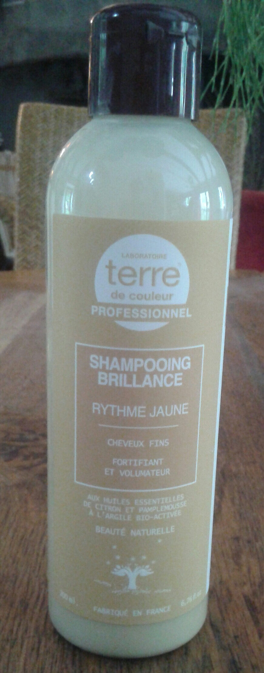 shampooing brillance - Produit - fr