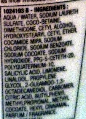 Elseve energie shampooing purifiant - Ingrédients - fr