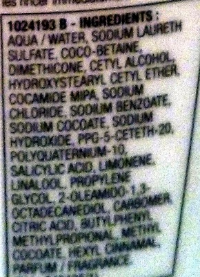 Elseve energie shampooing purifiant - Ingredients - fr