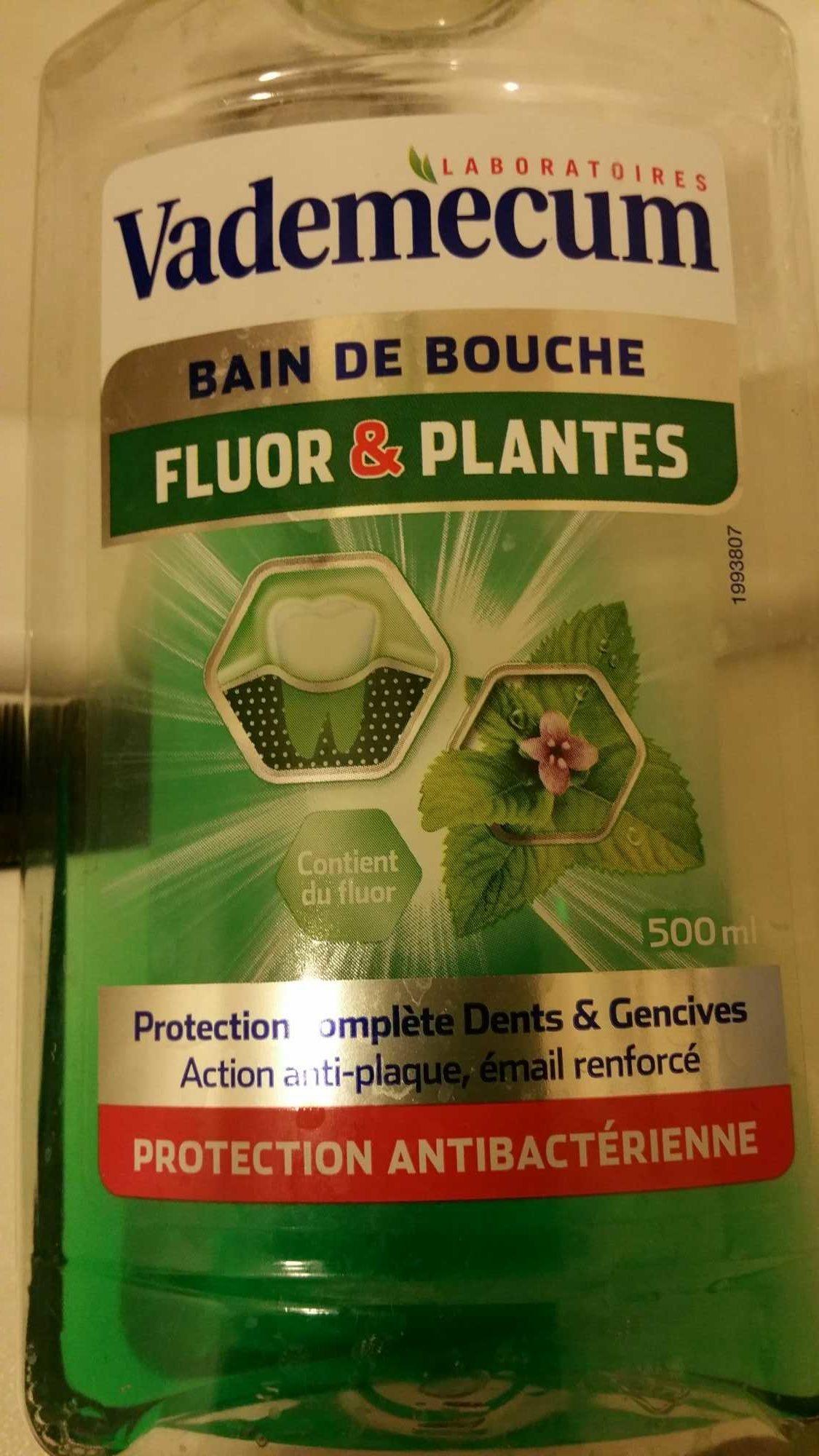 bain de bouche Fluor & plantes - Product - fr