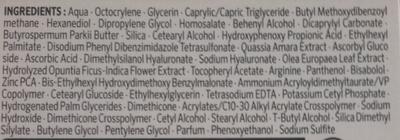 Lift + Super Correcteur Soin de Jour SPF 15 anti-Rides Correcteur - Ingredients