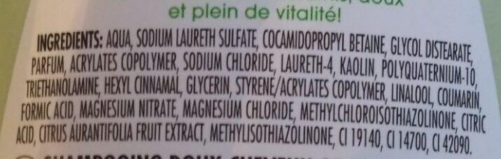 Shampooing Très Doux à l'Argile & Citron vert - Ingredients - fr
