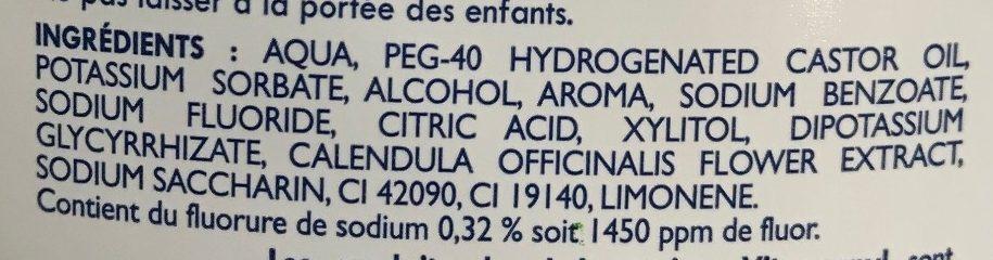 Homéocaryl Bain de bouche arôme Chlorophylle - Ingrédients - fr