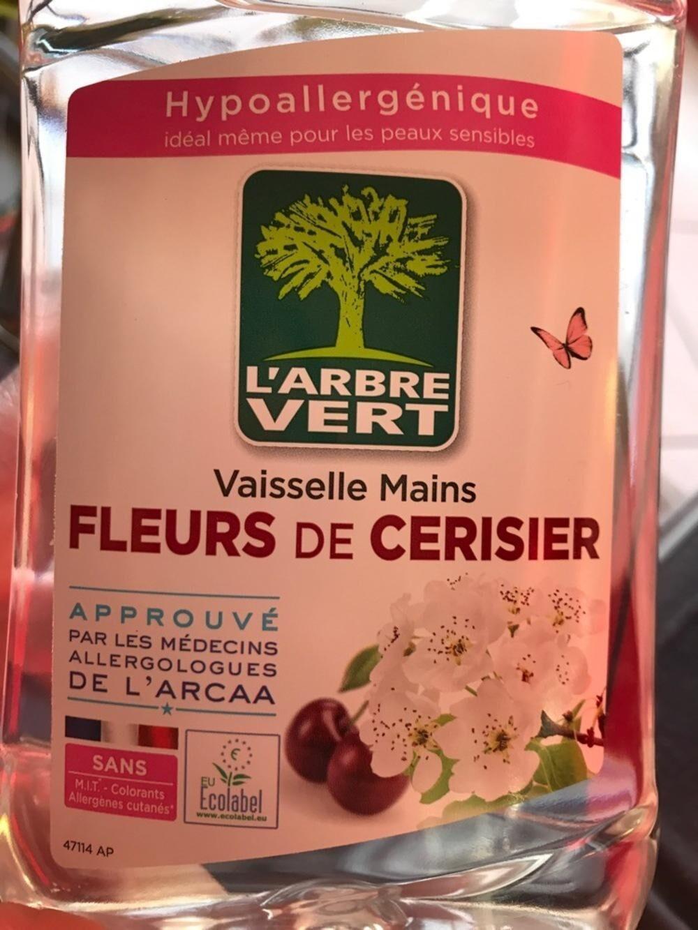 Vaisselle main l'arbre vert fleurs de cerisier - Product - fr