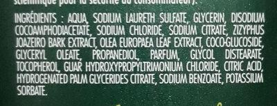 shampooing homme anti pelliculaire olivier & saponine - Ingredients - en
