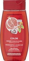 Shampooing raviveur de couleur - Produit - fr