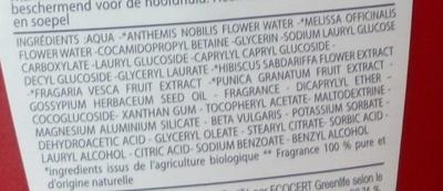 Shampooing 2 en 1 démêlant Fraise Grenade Lait de coton - Ingrédients - fr