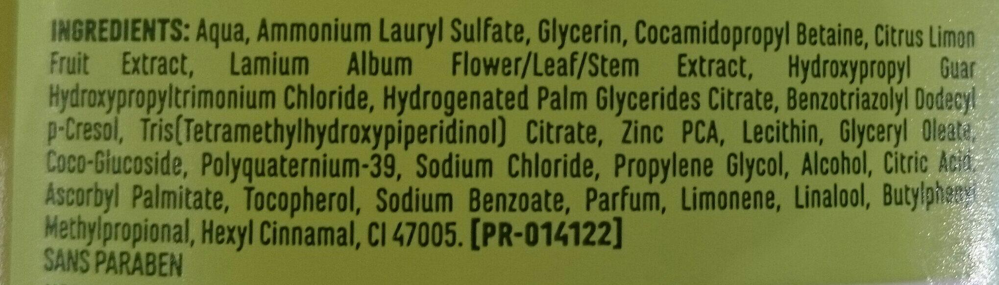 Shampoing doux purifiant à l'ortie blanche et au citron - Ingredients - fr