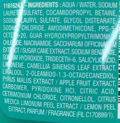 Garnier Fructis Force Ultime - Ingredients