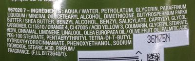 Lait nourrissant Corps Olive mythique - Ingredients