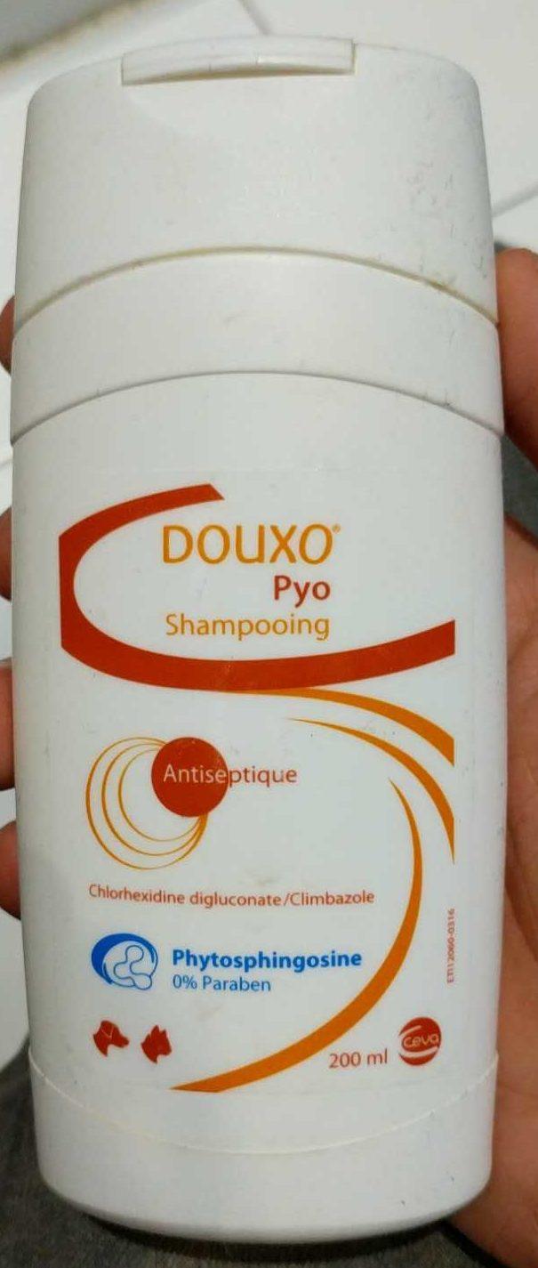 Pyo shampooing antiseptique - Produit