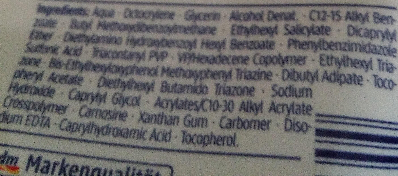 SUNdace - Ingredients - de