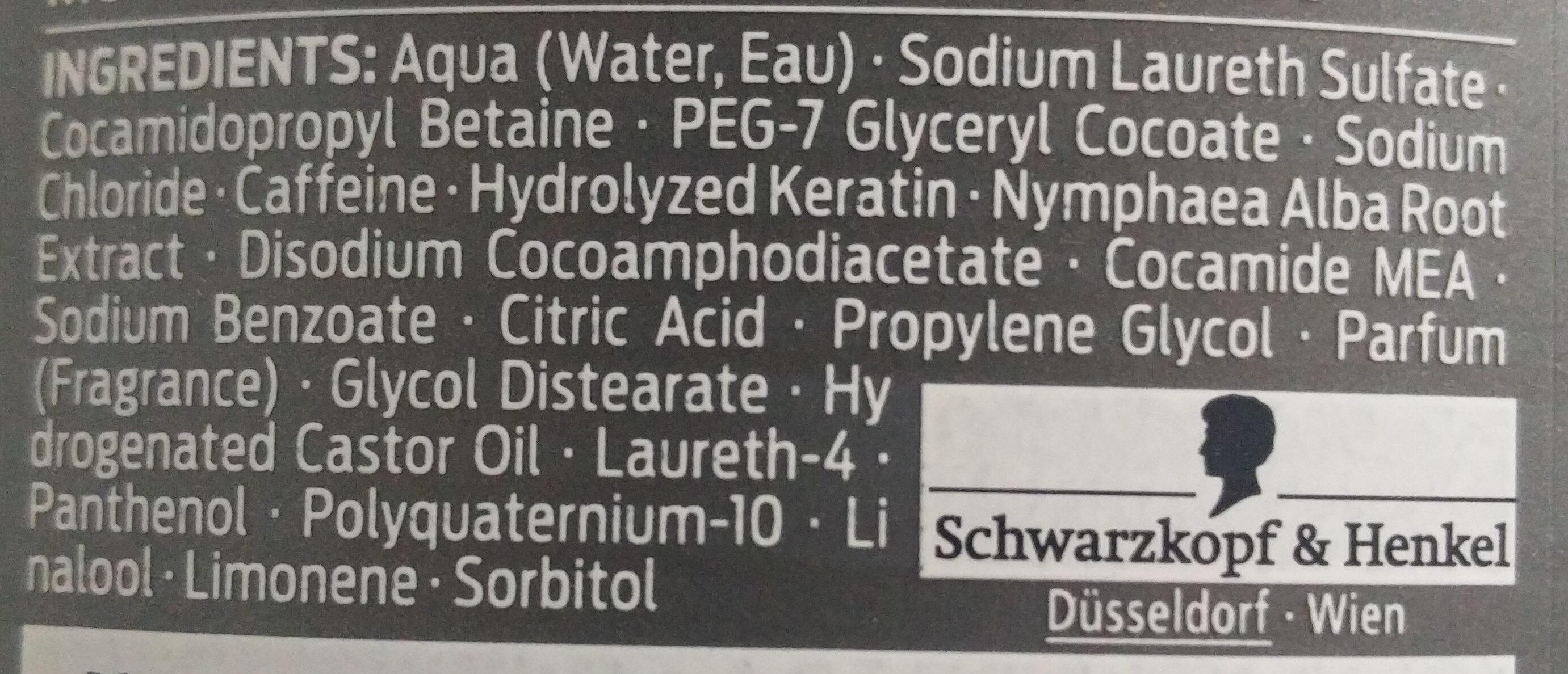Men Power Shampoo - Ingredients - de