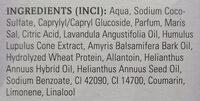 Ruhe Pur Badekonzentrat - Ingredients - de