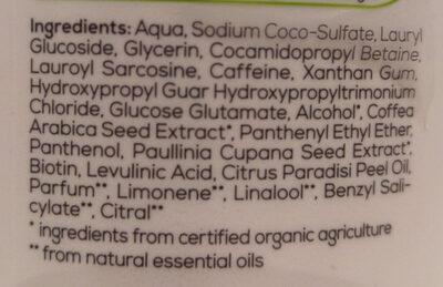 Alterra Koffein-Shampoo - Ingredients - de