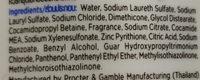 Pantene Pro-V Shampoo Anti Dandruff - Ingredients