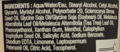 Tea Tree Cool And Creamy Wash - Ingredients - fr