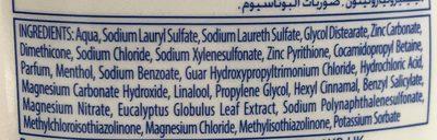 Shampooing anti-pelliculaire soin anti-démangeaisons à l'extrait d'eucalyptus - Ingredients