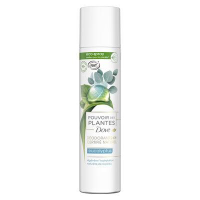 Dove Déodorant Femme Spray Pouvoir des Plantes Eucalyptus - 1