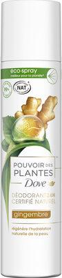 Dove Déodorant Femme Spray Pouvoir des Plantes Gingembre - Продукт - fr