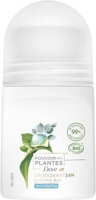 Dove Déodorant Femme Bille Pouvoir des Plantes Eucalyptus - Produit - fr