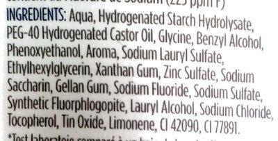 Signal Bain de Bouche Gel Liquide Actif Expert Complet - Ingrédients - fr