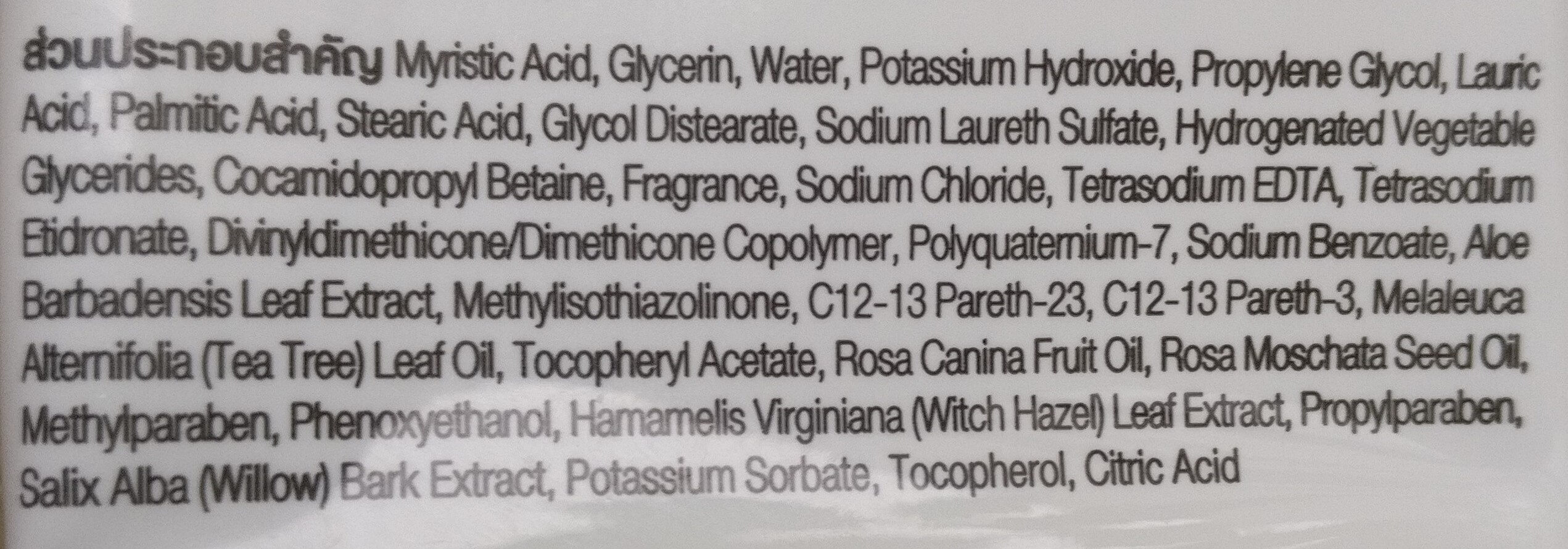 Facial Foam - Ingredients - en